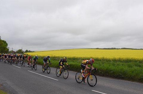 Wiltshire_Report_14